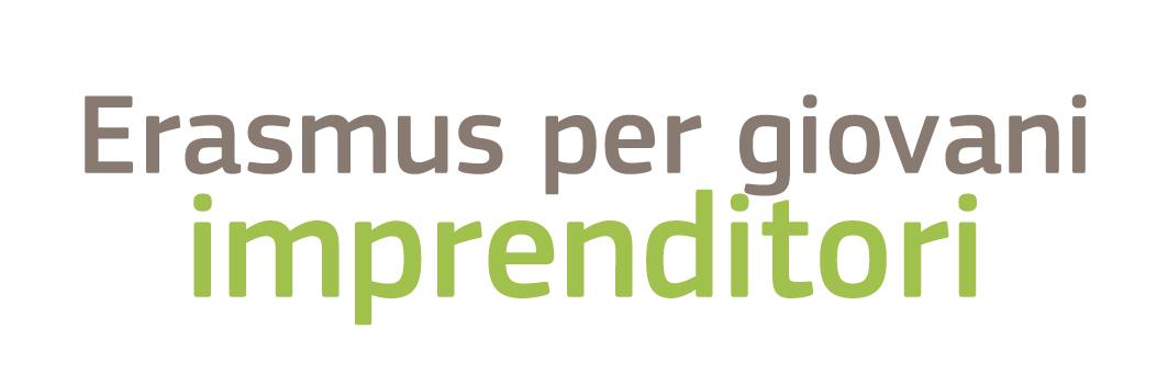 Erasmus program for young entrepreneurs